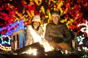Trail of Lights at the Denver Botanic Gardens starts on Dec. 1. (Denver Botanic Gardens photo)